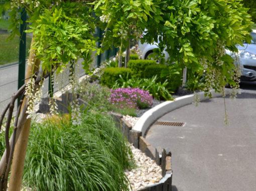 Bordure aménagée composée de fleurs et d'arbustes